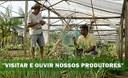 """Alexandre Perote – """"precisamos ouvir nossos produtores familiar e ordenar nossa produção primária"""""""